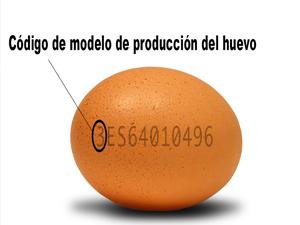 huevos-codigo