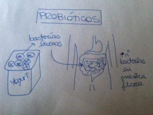 Esquema probióticos