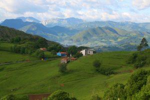 Foto de CasaMarcial.com