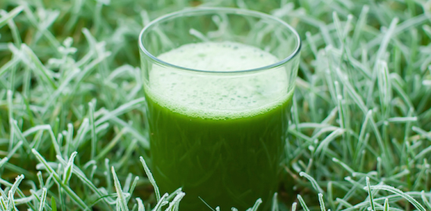 healthy organic green detox juice in a frozen grass