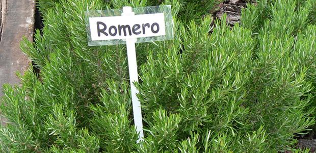 Huertos Urbanos Romero