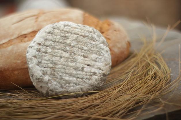 Degustación de quesos y espumoso en Antojos del Antiguo.
